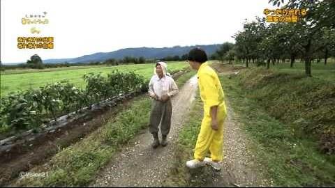テレビ番組:しあわせの黄色いトラック